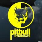 Наклейка pitbull syndicate питбуль голова собаки