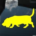 Наклейка Бассет-хаунд собака