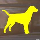 Наклейка Охотничья собака стоит