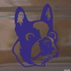 Наклейка Бостон-терьер голова собаки