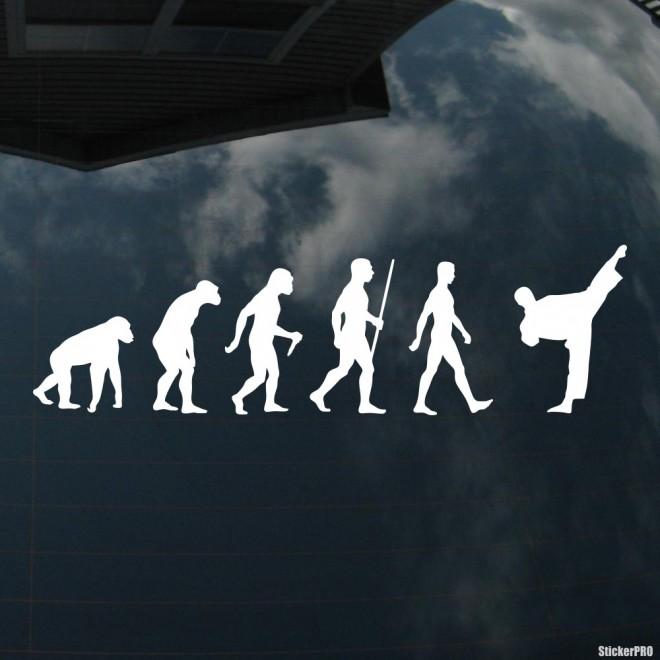 Наклейка каратист эволюция
