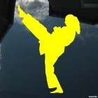 Наклейка каратистка удар ногой